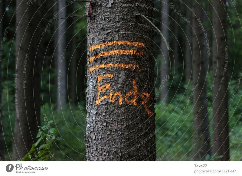 #Das Ende Umwelt Natur Landschaft Pflanze Tier Zeichen Schriftzeichen Schilder & Markierungen Hinweisschild Warnschild ästhetisch Farbfoto Außenaufnahme
