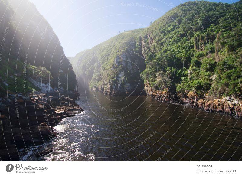 Rivers Mouth Himmel Natur Ferien & Urlaub & Reisen Wasser Sommer Pflanze Baum Sonne Landschaft Umwelt Küste natürlich Felsen Tourismus nass Sträucher