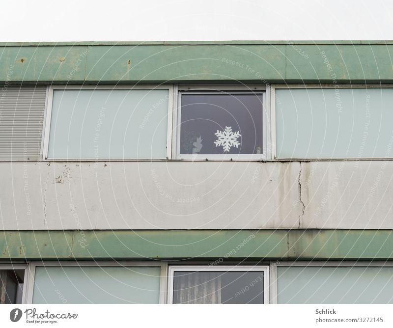 Hoffnung Feste & Feiern Weihnachten & Advent Dekoration Leuchte Haus Sozialbau Plattenbau Fassade Fenster Kunststoff Zeichen hässlich Stadt grau grün Einsamkeit