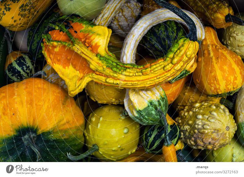 Kürbis (45%) Lebensmittel Gemüse Ernährung Wochenmarkt Bioprodukte frisch Gesundheit viele Farbfoto Außenaufnahme Nahaufnahme Menschenleer