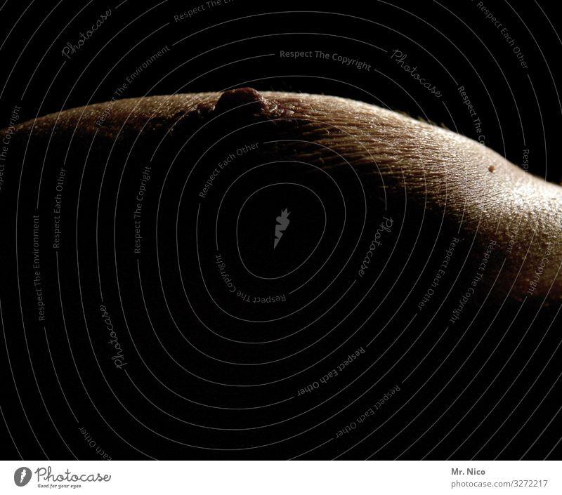hautsache | segsy schön Körperpflege feminin Frau Erwachsene Haut Brust Erotik Frauenbrust Frauenkörper nackt Weiblicher Akt Nackte Haut schwarz dunkel