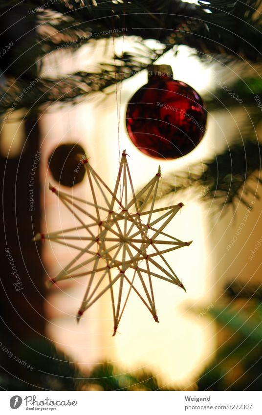 Weihnachtsstern Lifestyle Weihnachten & Advent leuchten Stern Weihnachtsbaum Kugel Feste & Feiern Innenaufnahme