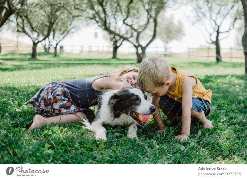 Liebenswerter Junge und Mädchen umarmen flauschigen Hund mit Ball im Maul auf Gras Kinder umarmend Garten Freund Haustier Kuscheln Sommer Freundschaft