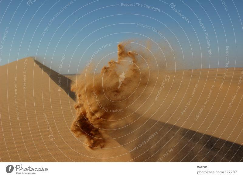 Vom Winde verwehter Sandlöwe Abenteuer Ferne Natur Landschaft Himmel Wolkenloser Himmel Schönes Wetter Wüste Namib Löwenkopf fliegen Wärme blau braun gelb Klima