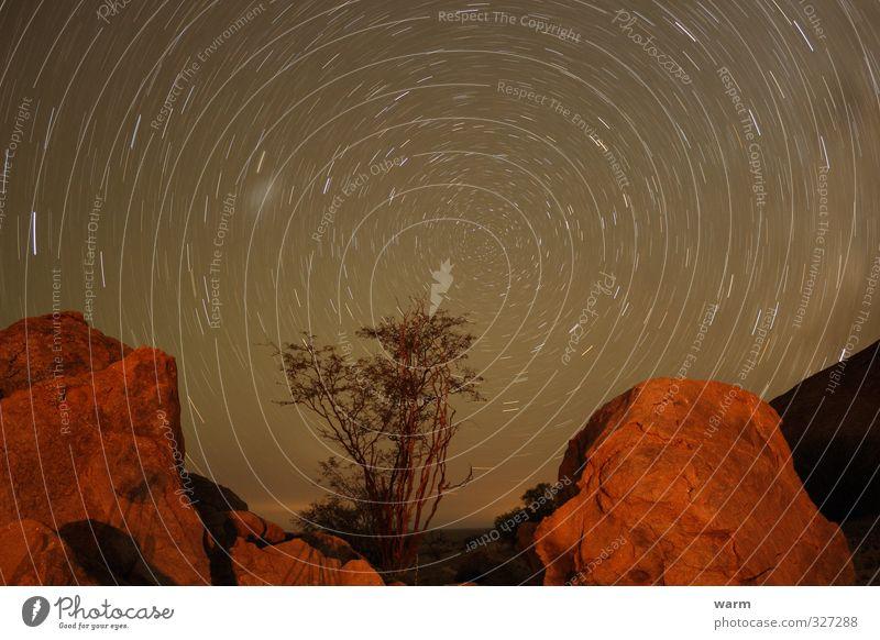 Kreisbahn Sternhimmel Langzeitbelichtung Umwelt Natur Landschaft Erde Himmel Wolkenloser Himmel Nachthimmel Baum Berge u. Gebirge Stein drehen Wärme braun