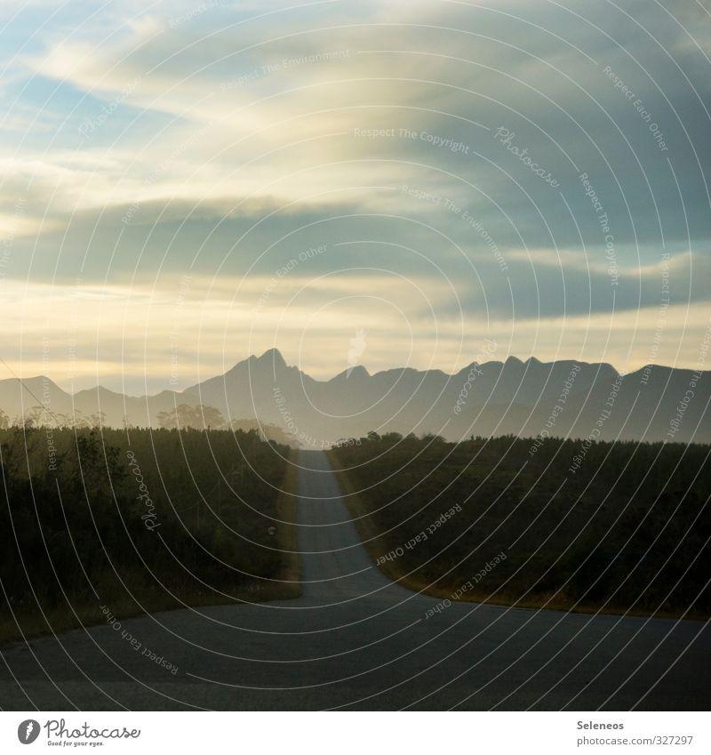 Roadtrip Himmel Natur Ferien & Urlaub & Reisen Pflanze Baum Landschaft Wolken Ferne Berge u. Gebirge Umwelt Straße Freiheit Felsen Horizont Tourismus Ausflug