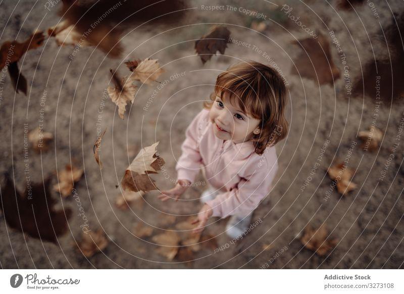 Fröhliches Kind verstreut Blätter auf Rasen im Park kotzend Herbst Kindheit freudig genießend Spaß heiter Natur fallen Spielen Laubwerk Bewegung Aufregung