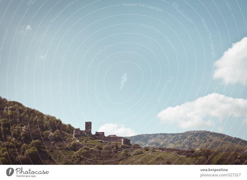 burg. irgendwo in der wachau. Natur Landschaft Himmel Wolken Schönes Wetter Baum Hügel Felsen Berge u. Gebirge Wachau Burg oder Schloss Ruine Turm Bauwerk Mauer