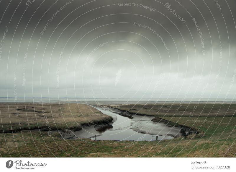 rømø-Schlusslichtermulti Umwelt Natur Landschaft Urelemente Erde Sand Luft Wasser Himmel Wolken Horizont Herbst Winter Wetter schlechtes Wetter Küste Seeufer