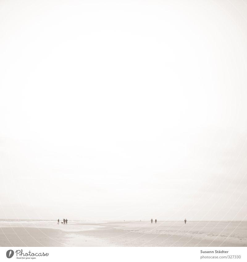 rømø   Ameisen Freizeit & Hobby Ferien & Urlaub & Reisen Tourismus Strand Meer Insel Menschengruppe Küste Nordsee träumen Rømø lakolk winzig vereinzelt laufen