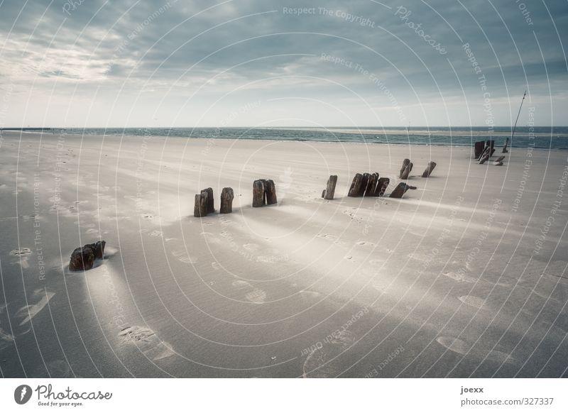 Gegenwind Landschaft Erde Sand Himmel Wolken Horizont schlechtes Wetter Wind Sturm Küste Strand Nordsee Insel Amrum blau braun schwarz kalt stagnierend Umwelt