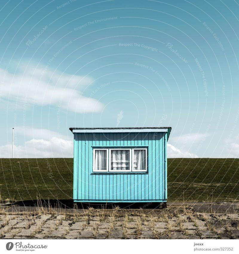 Gepflegtes Eigenheim Sommerurlaub Wohnung Haus Traumhaus Garten Himmel Wolken Schönes Wetter Gras Wiese Küste Menschenleer Hütte Fenster eckig einfach