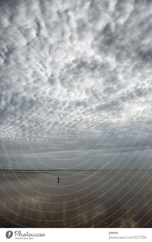 Verloren 1 Mensch Natur Luft Himmel Wolken Horizont Wetter schlechtes Wetter Küste Strand Nordsee Insel Amrum laufen dunkel Unendlichkeit kalt grau ruhig Trauer