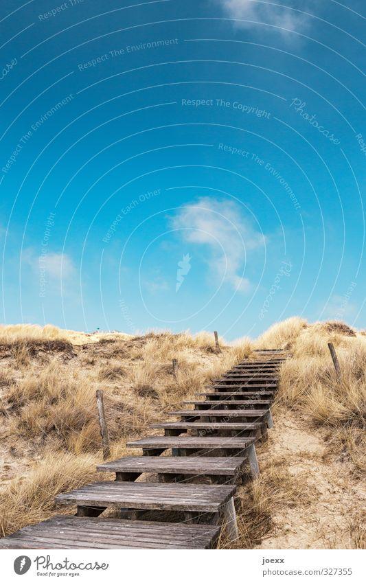 Schritt für Schritt Himmel Natur Ferien & Urlaub & Reisen blau alt weiß Sommer Landschaft ruhig Wolken Strand Ferne Gras Wege & Pfade Freiheit braun