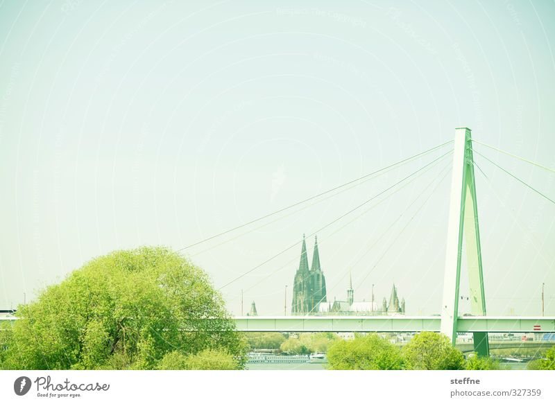 Helau! Baum Köln Dom Brücke Sehenswürdigkeit Wahrzeichen Kölner Dom ästhetisch Severinsbrücke Rheinauhafen Farbfoto Panorama (Aussicht)