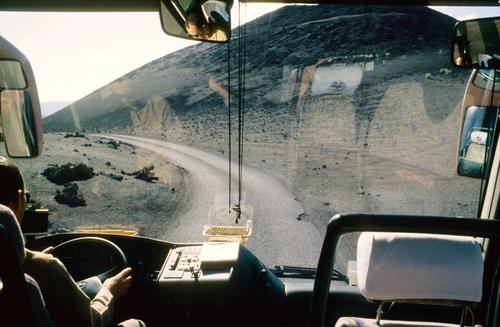 busfahrer Arbeit & Erwerbstätigkeit Beruf Umwelt Natur Landschaft fahren Busfahren Fensterscheibe Lenkrad lenken Güterverkehr & Logistik Farbfoto Innenaufnahme
