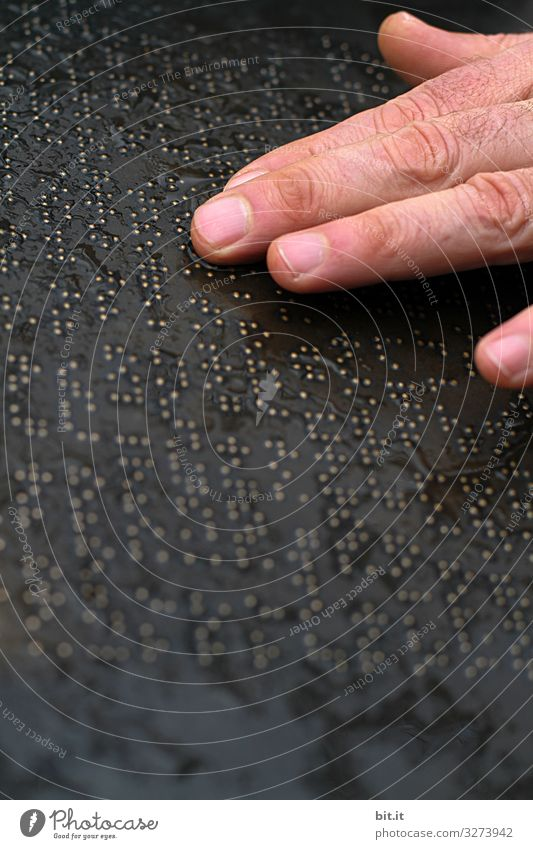 Geschriebenes l Blindenschrift mit Fingern Zeichen Schriftzeichen lesen Kraft Willensstärke Vertrauen Sicherheit blind Brailleschrift berühren Text