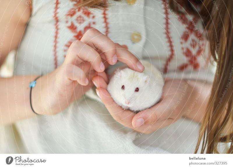 Luna | Streicheleinheiten Mensch Kind weiß Hand rot Mädchen Tier Leben feminin Haare & Frisuren braun Körper Kindheit Arme Finger weich