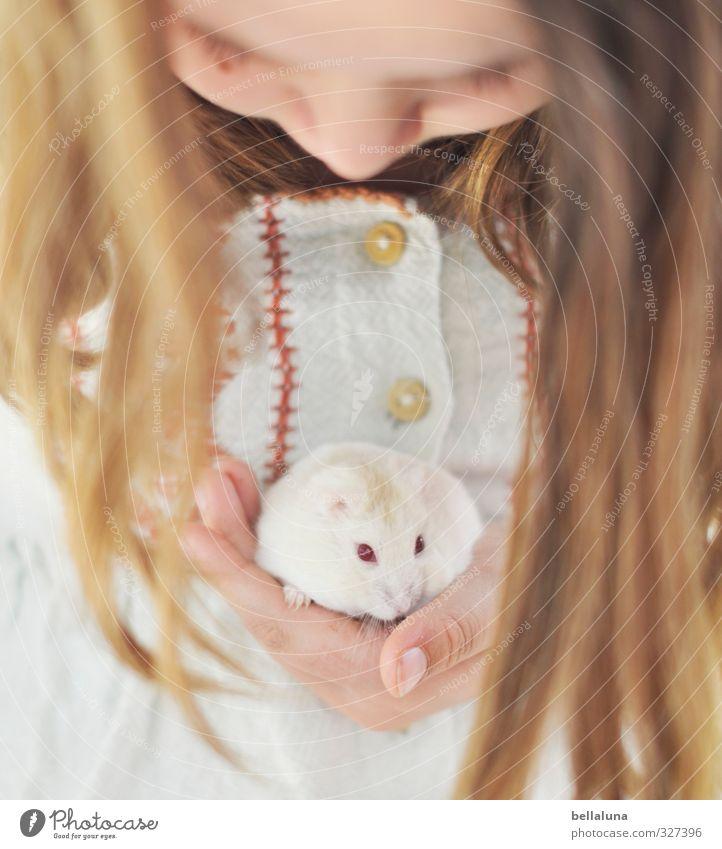 Luna | vertrau mir. Mensch feminin Kind Mädchen Kindheit Leben Körper Kopf Haare & Frisuren Gesicht Auge Nase Hand Finger 1 8-13 Jahre Tier Haustier festhalten