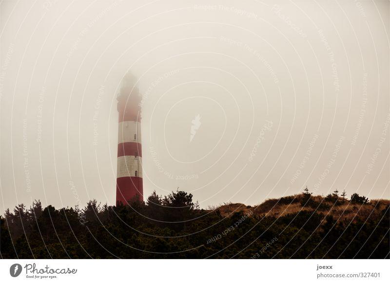 Egal was kommt Himmel Wetter schlechtes Wetter Nebel Insel Amrum Leuchtturm Gebäude alt gruselig hoch braun rot weiß Angst Hoffnung Tourismus Farbfoto