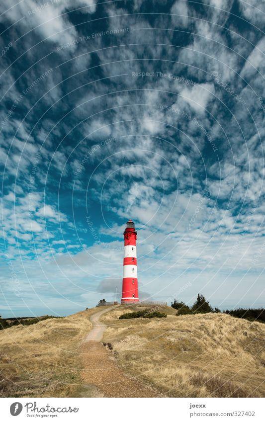 Pause Himmel blau grün weiß Sommer Farbe rot Wolken Gras Wege & Pfade Horizont braun Idylle Schönes Wetter Insel Hügel