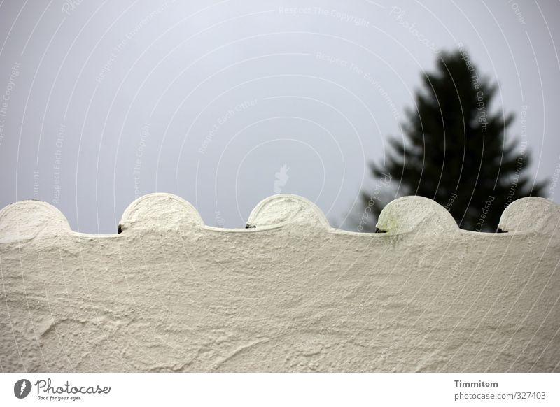 Schwarzwald. Himmel Ferien & Urlaub & Reisen weiß Baum Umwelt Wand Gefühle Mauer grau einfach Schutz Neugier Backstein Putz Fichte Schwarzwald