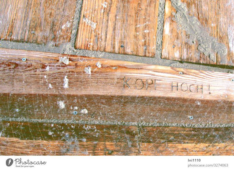 Kopf hoch! Landschaft Sommer Regen Seeufer Strand Nordsee Insel Helgoland Sand Holz braun grau rot Strandspaziergang Steg Holzbrett Düne nass aufmuntern