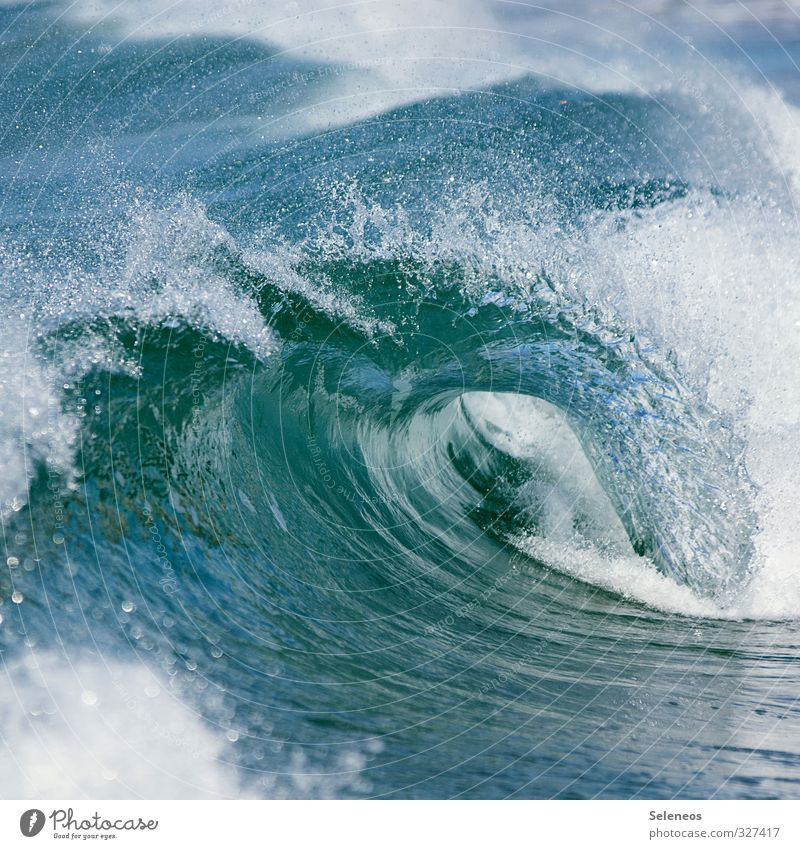 make waves Natur Wasser Meer Umwelt Küste natürlich Wellen nass Wassertropfen Seeufer Flüssigkeit Wassersport