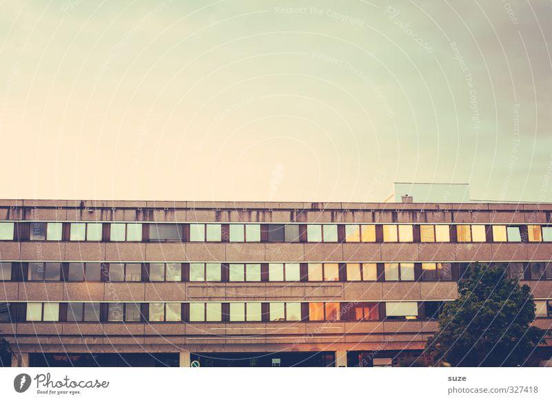 Ostalgie Himmel alt Baum Umwelt Fenster Wand Architektur Mauer Gebäude Zeit Arbeit & Erwerbstätigkeit Fassade Vergänglichkeit retro Zeichen Ewigkeit