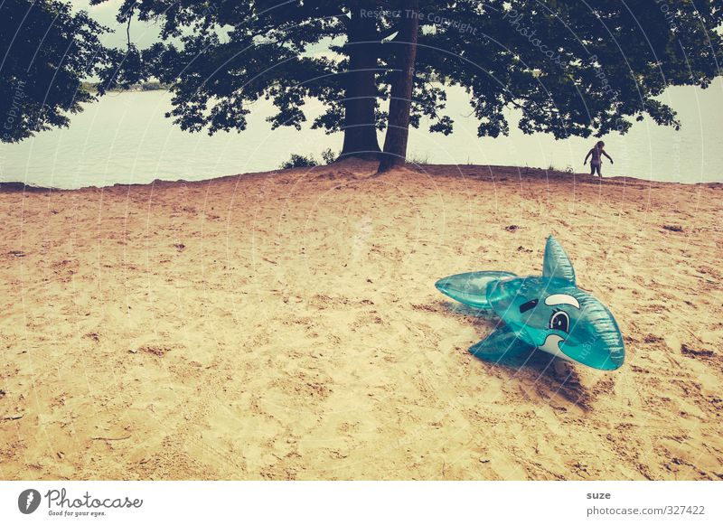 Walsafari ruhig Freizeit & Hobby Ferien & Urlaub & Reisen Ausflug Sommer Sommerurlaub Kind Umwelt Natur Landschaft Tier Sand Wasser Baum Seeufer Spielzeug