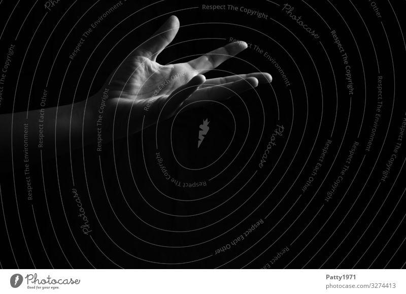 Hand feminin Arme 1 Mensch ästhetisch Gefühle Vertrauen Hilfsbereitschaft Ehrlichkeit Schwarzweißfoto Textfreiraum unten Textfreiraum Mitte Hintergrund neutral