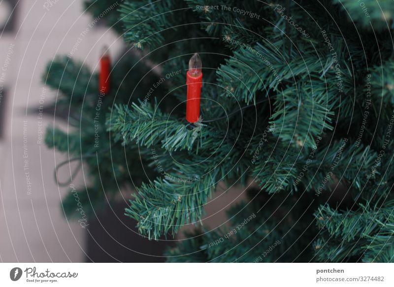 Teil eines Weihnachtsbaumes mit zwei roten elektrischen Kerzen Feste & Feiern Weihnachten & Advent Lichterkette elektrische kerzen Technik & Technologie Natur