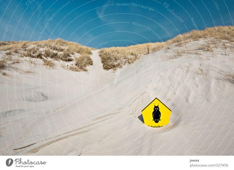 Naturschutz-Eule Landschaft Sand Himmel Horizont Sommer Schönes Wetter Wind Gras Hügel Küste Strand Nordsee Insel Amrum Wege & Pfade Hinweisschild Warnschild
