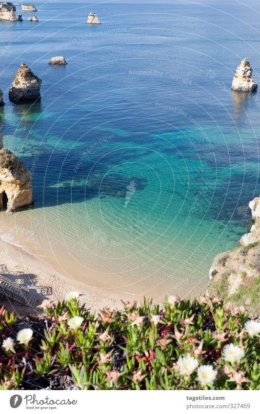 PRAIA DO CAMILO Natur Ferien & Urlaub & Reisen Meer Landschaft ruhig Erholung Strand Küste Reisefotografie Felsen Freizeit & Hobby Idylle Tourismus Bucht