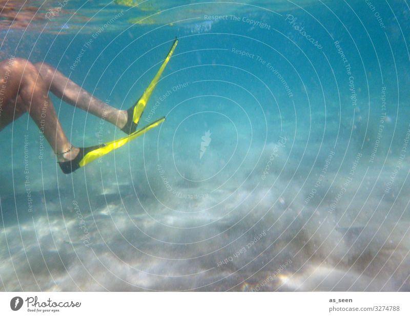 Flossen ins Wasser Schwimmen & Baden Freizeit & Hobby Ferien & Urlaub & Reisen Tourismus Kreuzfahrt Sommer Sommerurlaub Wassersport tauchen Beine Fuß 1 Mensch