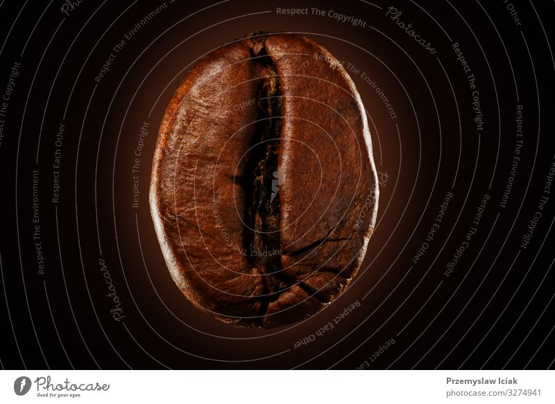 Eine Kaffeebohne auf schwarzem Hintergrund isoliert. 1 Nahaufnahme Frische Sucht Aroma Bohne groß Frühstück braun verbrannt brennend Café Koffein Cappuccino