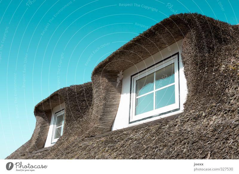 Neue alte Sicht blau weiß Haus Fenster braun Dach neu Fensterblick Dachgaube Reetdach