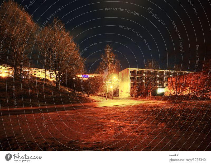 Nachtschicht Stadt Baum Haus ruhig Fenster dunkel Straße Wand Wege & Pfade Gebäude Mauer leuchten trist Sträucher bedrohlich Straßenbeleuchtung