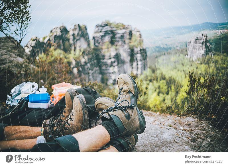 Wandertag Mensch Natur Mann Jugendliche Ferien & Urlaub & Reisen Sommer Pflanze Freude Landschaft Erholung Wald Erwachsene Umwelt Berge u. Gebirge Leben