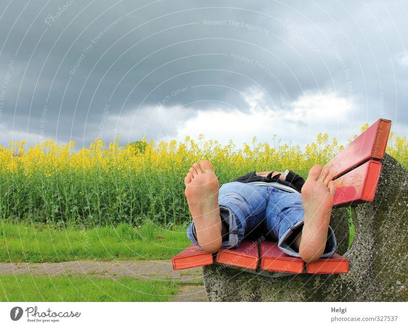 auf einer roten Bank vor einem gelb blühenden Rapsfeld liegt eine Frau in Jeans mit nackten Füßen Ausflug Mensch feminin Erwachsene Beine Fuß 1 30-45 Jahre