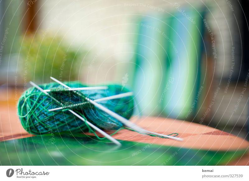 Helgiland | Chamäleon Freizeit & Hobby stricken Häusliches Leben Wohnung Stuhl Tisch Wolle Wollknäuel Stricknadel blau grün Farbfoto Außenaufnahme Nahaufnahme