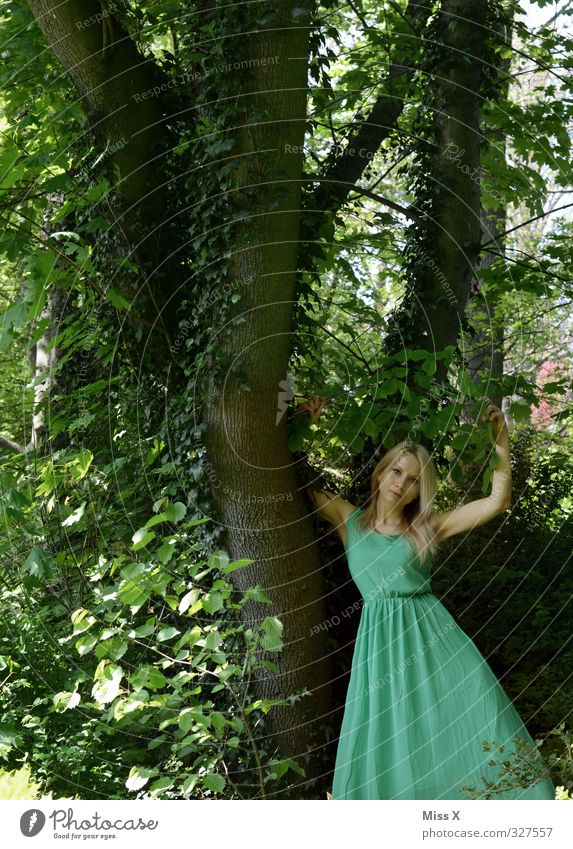 Waldelfe Mensch feminin Frau Erwachsene 1 18-30 Jahre Jugendliche Baum Efeu Kleid blond langhaarig schön Erotik grün Liebe Romantik Märchen Märchenwald Elfe Fee