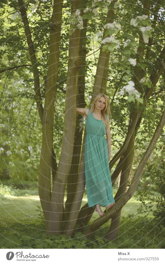Baumnymphe Mensch Frau Kind Jugendliche grün schön Sommer Baum Junge Frau Wald Erwachsene Erotik feminin Frühling Blüte Mode