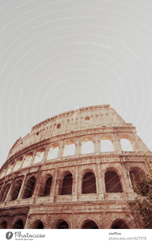 kolossal Rom Italien Sehenswürdigkeit Wahrzeichen Kolosseum alt ästhetisch außergewöhnlich Bekanntheit historisch Gedeckte Farben Außenaufnahme