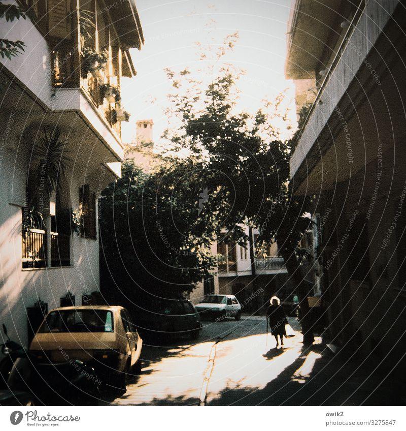 Schweres Los Weiblicher Senior Frau 1 Mensch Himmel Baum Thessaloniki Stadt Stadtzentrum Altstadt bevölkert Haus Gebäude Fassade Balkon Fenster Straße PKW