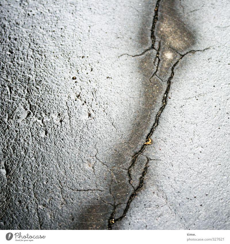 Alles muss raus Stadt Straße Bewegung Wege & Pfade grau glänzend Verkehr Armut nass Vergänglichkeit Vergangenheit Risiko Asphalt Verfall Schmerz