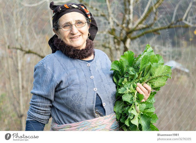 Porträt einer älteren Frau, die frisches Kräutergemüse aus dem Garten pflückt, Gemüse Ernährung Bioprodukte Vegetarische Ernährung Diät Lifestyle Stil