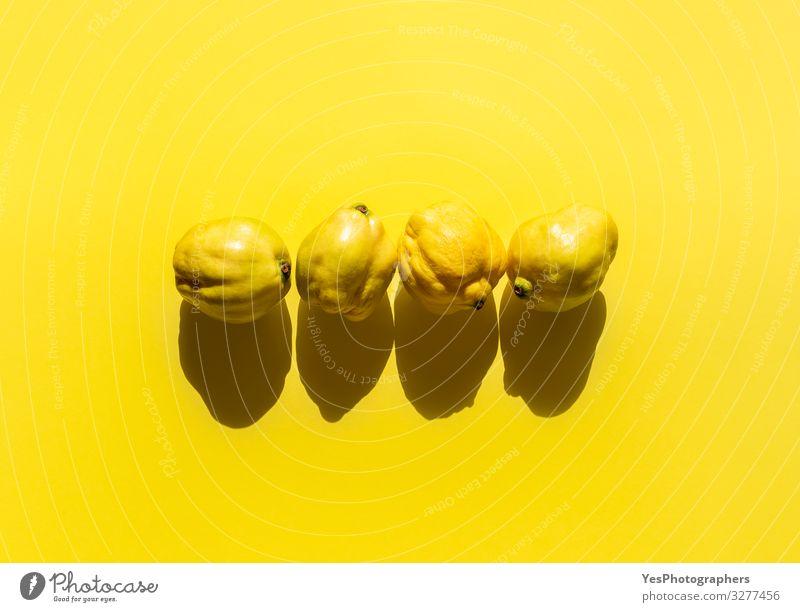 Frische Quittenfrüchte auf gelbem Grund. Vier Quitten minimal Lebensmittel Frucht Gesunde Ernährung hell lecker natürlich gold Cydonia oblonga obere Ansicht