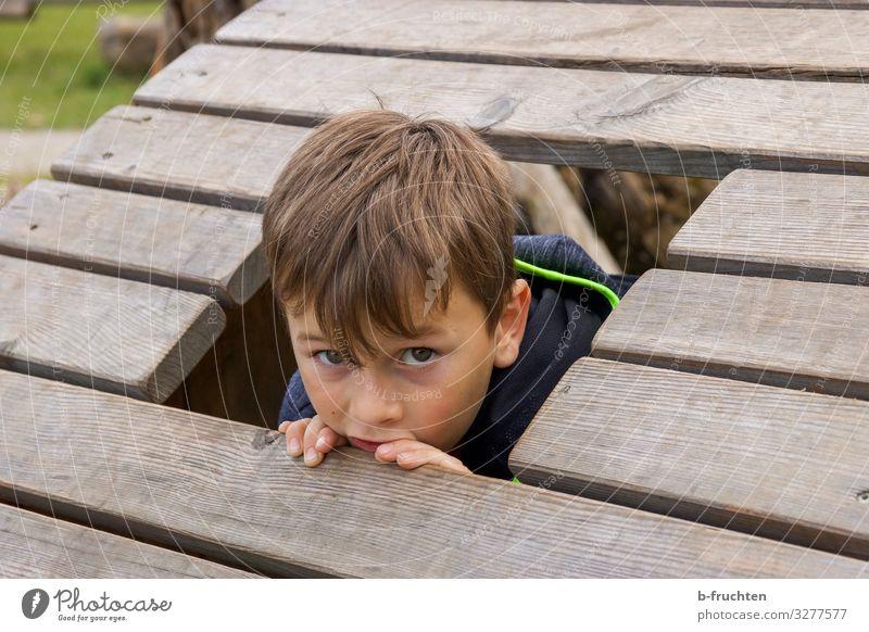 Kind auf Spielplatz Freizeit & Hobby Spielen Ferien & Urlaub & Reisen Junge Gesicht 1 Mensch 8-13 Jahre Kindheit entdecken Blick Holz Fenster verstecken