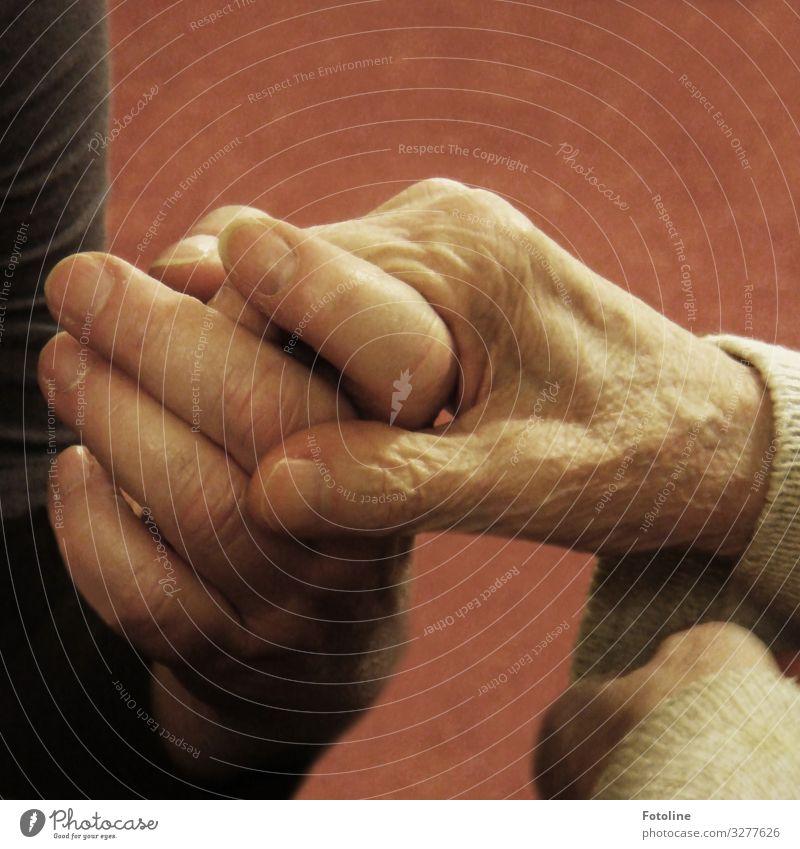 Demenz... Mensch feminin Weiblicher Senior Frau Großmutter Leben Haut Hand Finger 2 60 und älter alt Krankheit nah Fingernagel Bekleidung Gefühle Liebe